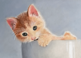 Drawing a Kitten in Colored Pencil with Powder Blender
