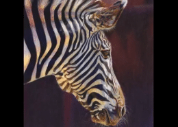 Drawing a Zebra in Colored Pencil with Powder Blender | Tutorial