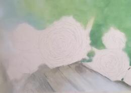 Muh Rose part 1 - Polychromos colored pencil, powder blender, titanium white, UArt sanded paper