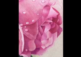 blending fine details with coloured pencil blending powder